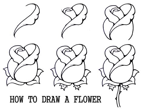 daryl hobson artwork   draw  flower step  step