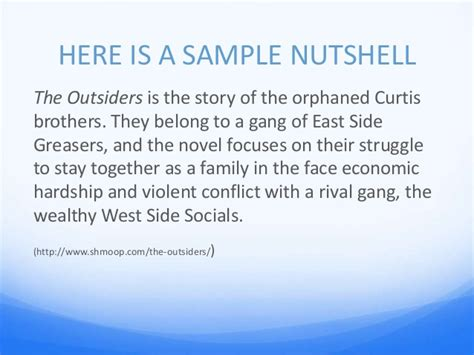 The Outsiders Overview by The Outsiders Essay Power Point Cm