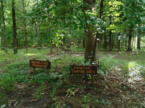 lake bob sandlin state park primitive campsites hike  texas parks wildlife department