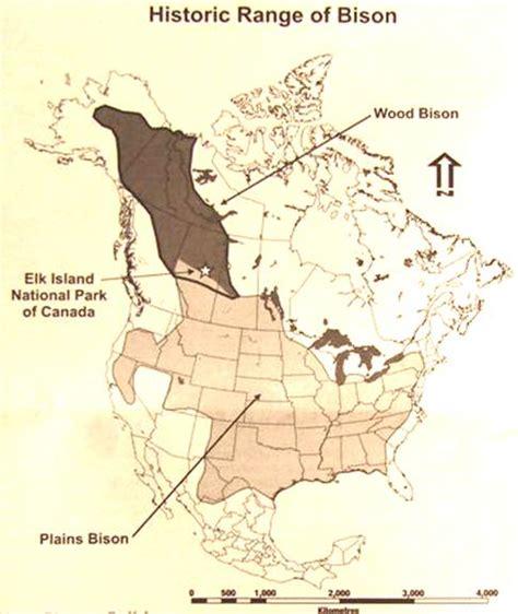 canada elk island national park