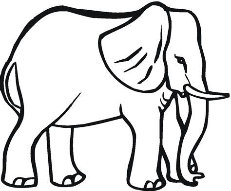 coloring pages  animals elephant big animals coloring