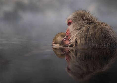 2016 National Geographic Traveler Photo Contest's Best