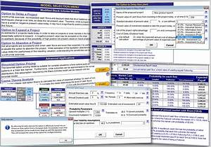 Excel Client Tracking Template Excel Real Options Valuation Template