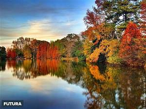 fond d39ecran automne sur le lac clara meer atlanta With forum plan de maison 13 fond decran feuilles dautomne