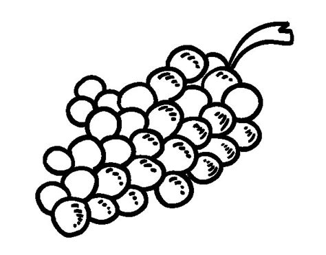 Wine Grapes Coloring Page