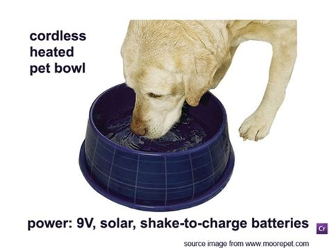 cordless heated pet bowl autonomously powered  solar