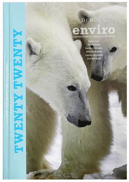Polar Bear Debden