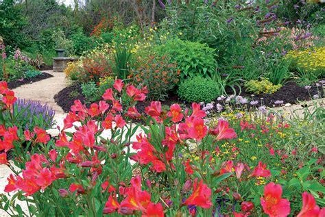 plants for butterfly garden butterfly garden plants southern california 171 margarite gardens