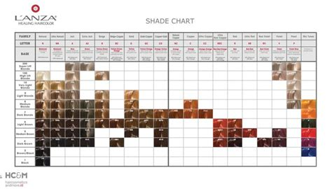 l shade shapes guide 1000 images about lanza on pinterest colors almonds