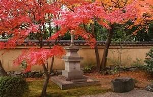 Pflanzen Japanischer Garten Anlegen : zen garten gestalten das geh rt in einen japanischen steingarten ~ Markanthonyermac.com Haus und Dekorationen