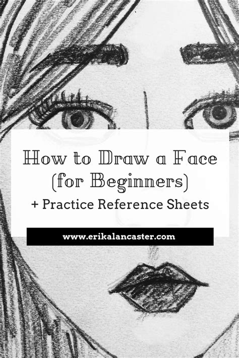 draw  face  beginners  images drawing