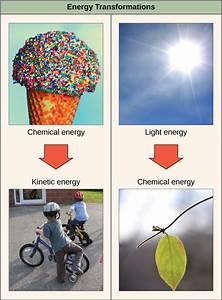 2 2 Energy  U2013 Environmental Biology