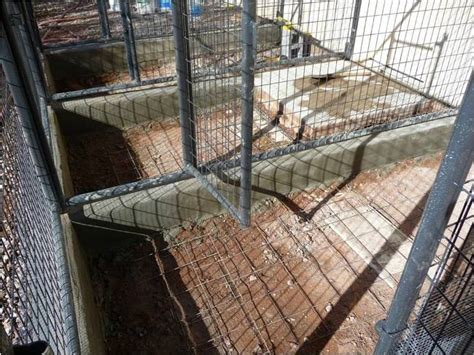 Outside Kennel Flooring Ideas by Az How To Build A Kennel Arizona