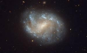 Orbiter.ch Space News: Hubble Image of Galaxies' El Dorado