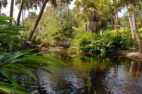 mckee botanical gardens five picture of mckee botanical garden vero
