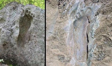 Giant Human Footprint Fossilized In Rock Discovered In