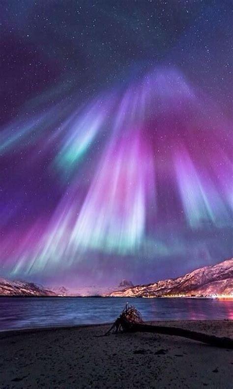 norway march northern lights aurora lights northern norway aurora borealis pinterest