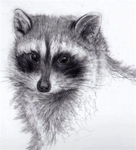 animals pencil drawings bing images art pencil