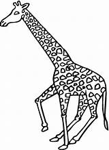 Giraffe Coloring Pages Giraffes Cute Animals Printable Baby Supercoloring Getcoloringpages Chakiradecor Galloping sketch template