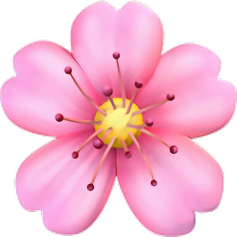 Png Emoji Flower Iphone  Sticker By Conny Garces