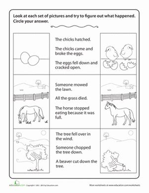 Story Comprehension Drawing Conclusions  Worksheet Educationcom