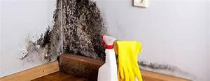 Schimmel An Der Wand : vasner schimmel an der wand beseitigung prophylaxe ~ Frokenaadalensverden.com Haus und Dekorationen