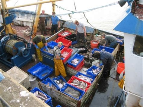 Commercial Fishing Boat Jobs Ireland by Commercial Fishing Britishseafishing Co Uk