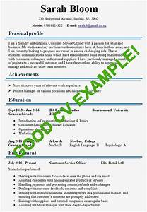 Example Of A Good Resume Format Pin By Fleta Mountain Resume Tips On Resume Examples