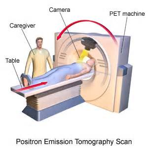 how does a cat scan take i am biomed