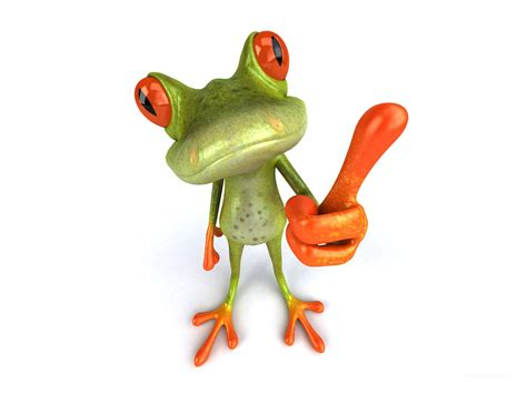 funny frog animals wallpapers hd wallpapers hd