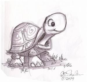 cartoon animal sketch | Cute Turtle | drawings | Pinterest ...