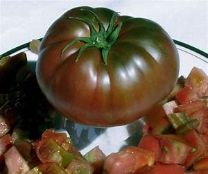 Tomato 'Black Krim' | Garden Housecalls