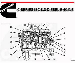 Free A21 Cummins C Series Shop Manual Download  U2013 Best