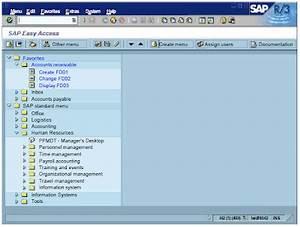 Information Technology: Lession 1 - SAP Navigation