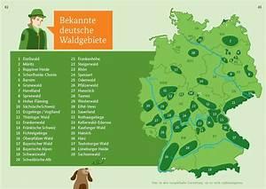 Wo Liegt Lübeck : laubw lder deutschland karte my blog ~ Orissabook.com Haus und Dekorationen