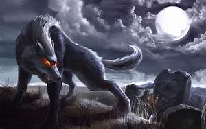 Angry wolf wallpaper #30837