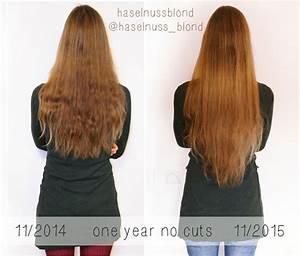 Weinreben Schneiden 1 Jahr : hairloss archive haselnussblond healthy happy hair ~ Lizthompson.info Haus und Dekorationen