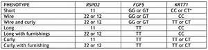 Patent Docs  August 2009