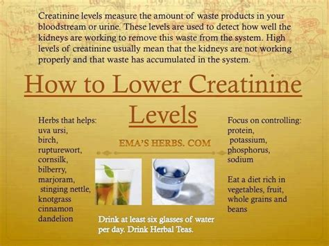 how 2 lower creatinine levels be well