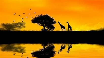 African Africa Sunset Wallpapers Cool Map Tree