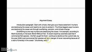 Argument Essay Body Paragraphs
