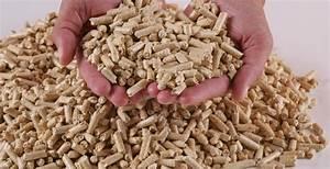 Chaudière à Granulés De Bois : co conseil chaudi re granul s de bois pellets ~ Premium-room.com Idées de Décoration