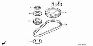 timing belt for honda 20 general sales region 7289158 With general timing belt