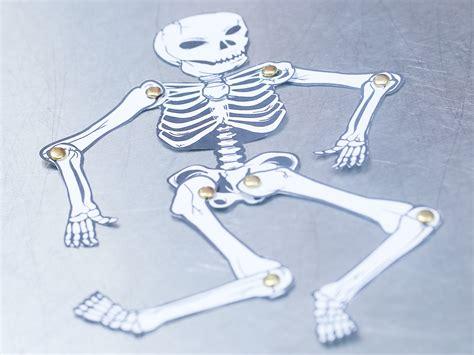 fare uno scheletro umano  carta  passaggi