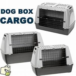 Cage Transport Chien Voiture : cage de transport voiture pour chien ~ Medecine-chirurgie-esthetiques.com Avis de Voitures