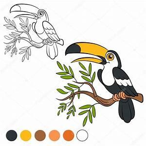 Página para colorear Color me: tucán Archivo Imágenes Vectoriales © ya mayka #109367116