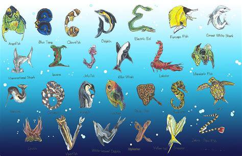 sea alphabet drawing  eric fronapfel