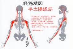 acupuncture grossesse si e si 11 acupuncture point tian zong small intestine