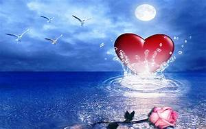 Pink Rose Heart Sea Birds Hd Wallpaper : Wallpapers13.com