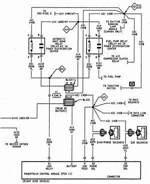 1994 Dodge Ram 1500 Fuel Pump Wiring Diagram 24851 Getacd Es